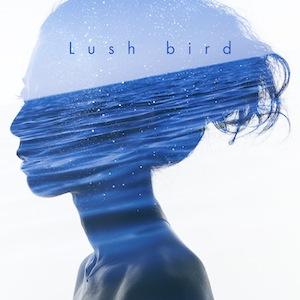 bird_Lush_jk のコピー 3